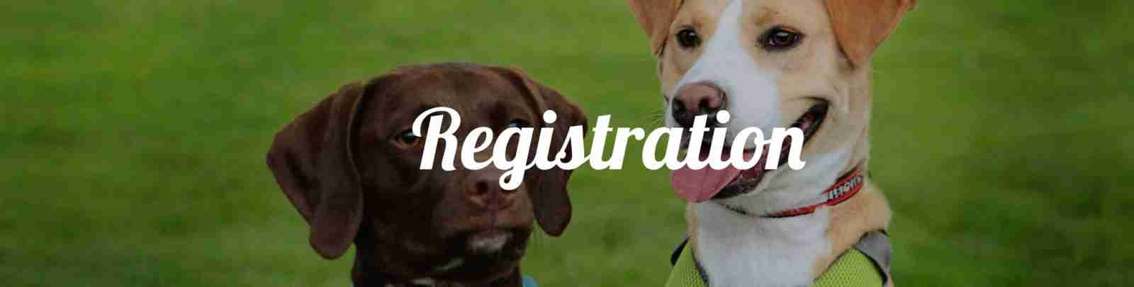 tails n trails registration
